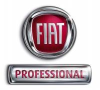 thumb_fiat_professional_logo